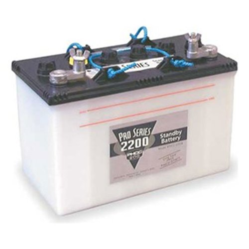 Pro Series B2200 Deep Cycle Dry Cell Battery