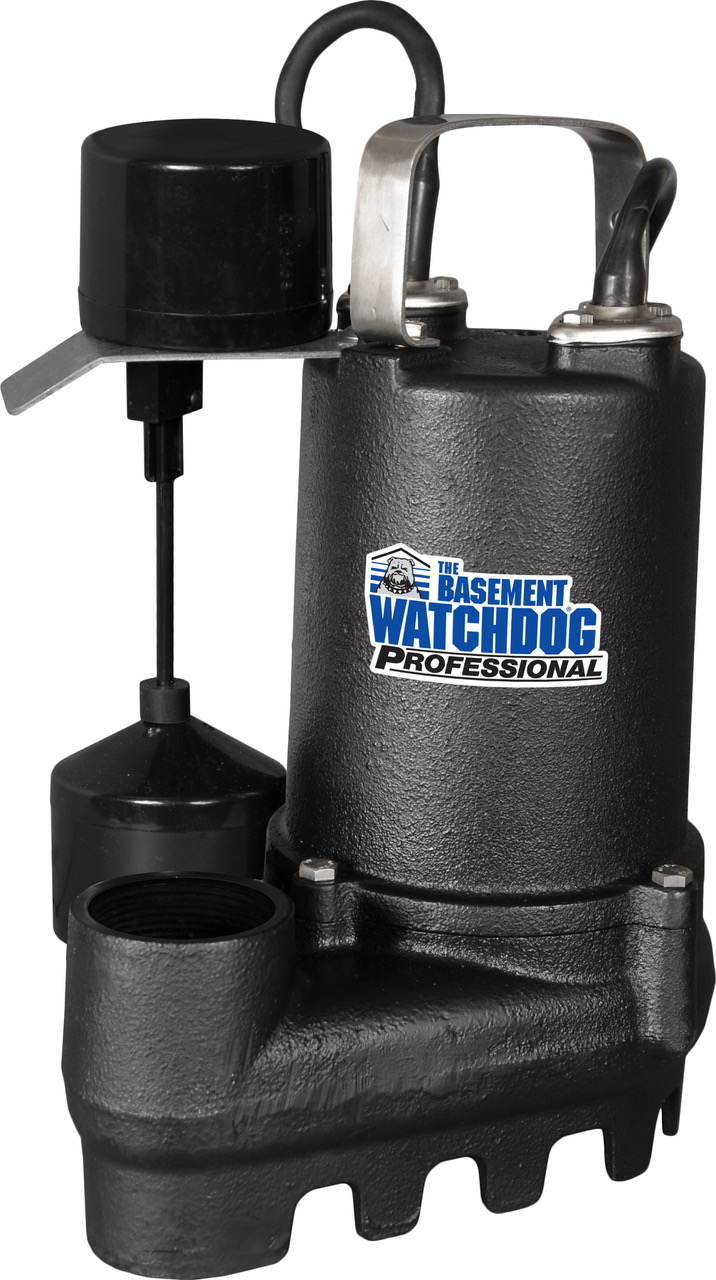 1/3 HP Cast Iron Sump Pump with Vertical Switch