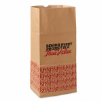 Paper Lawn & Leaf Bag 5 Pack